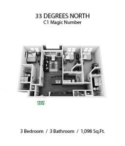 33 DEGREES NORTH 3 X 3 C1