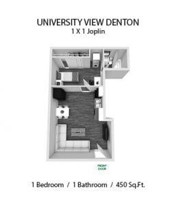 UNIVERSITY VIEW DENTON 1 X 1 JOPLIN